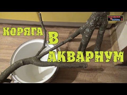 Как сделать коряги для аквариума своими руками