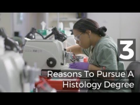 Histology Degree In Ct Goodwin University