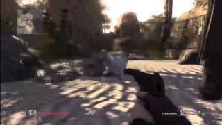 Sniper: Run Chicken Run! (HD)