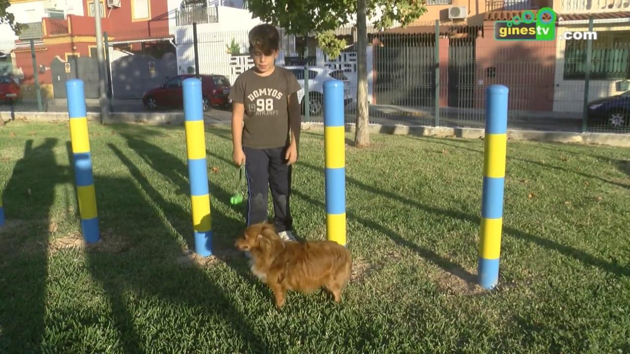 Abren sus puertas en Gines 3 parques caninos