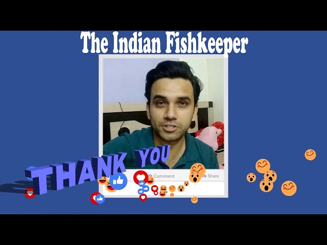 1000 Subscribers Thank You Video | The Indian Fishkeeper