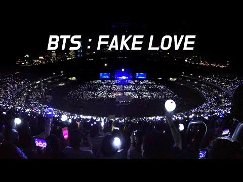 180622 BTS : FAKE LOVE 떼창 fanchant : WIDE FANCAM : LOTTE FAMILY CONCERT 2018 : 방탄소년단 防弾少年団