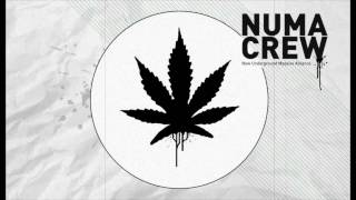 Alborosie - herbalist dubstep remix by NUMA CREW - HD
