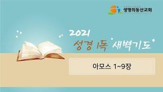 새벽 성경 1독(아모스…