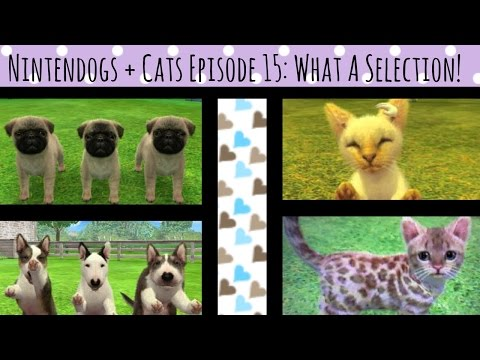 Nintendogs + Cats Episode 15: What A Selection!