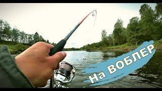 Щука на воблеры. Река Межа. Рыбалка в сентябрь 2019
