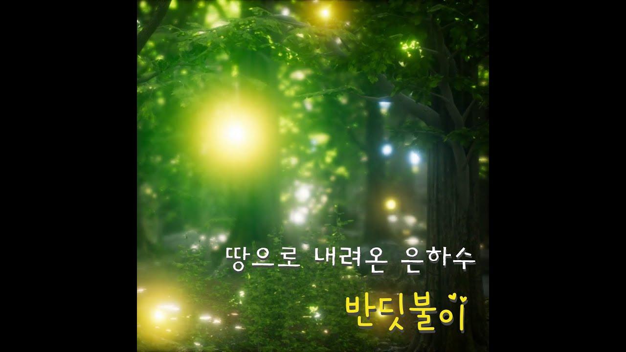 [카드뉴스] 땅으로 내려온 은하수, 반딧불이