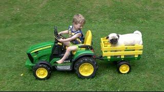 Pug Loves John Deere Tractors