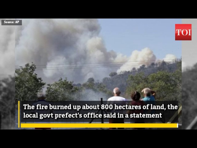 Wildfires prompt 10,000 evacuations on French Riviera