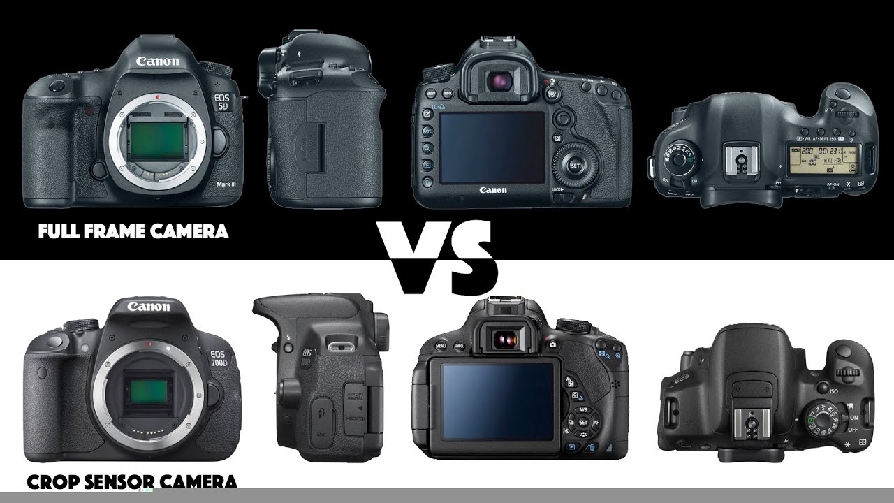 Full Frame Vs Crop Sensor What S The Difference Photography Basics Youtube