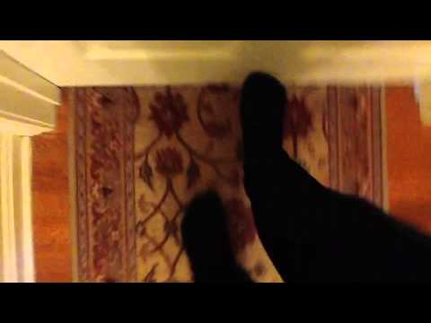 Feet Feet Alex