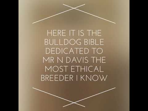 Bulldog bible / standard dedicated N Davis