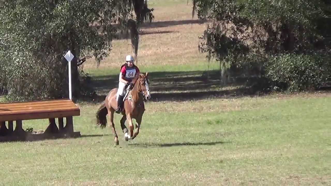 Emily McCauley & Canadian Exchange at Rocking Horse Horse Trials 2 February  2014