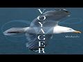 Michael E - Voyager  (The Album (Taster Mix))  *k~kat chill café*   The Smooth Loft