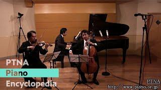 Schubert: Notturno D.897 赤松林太郎(pf), 平山慎一郎(vn), 寺田達郎(vc)