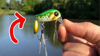 CRAZIEST Expensive Tiny Lure I've EVER Seen!!! (Surprising)