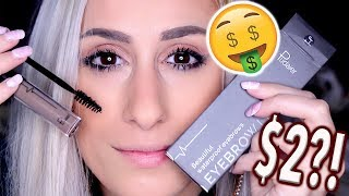 THE BEST $2 EYEBROW TATTOO YOU'LL EVER TRY?!