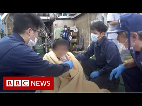 One seaman survives capsize of cargo ship in typhoon – BBC News