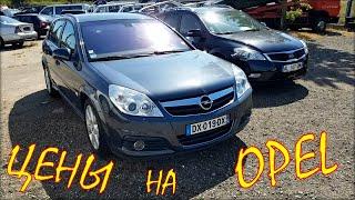 Opel цена авто из Литвы. Август 2020.