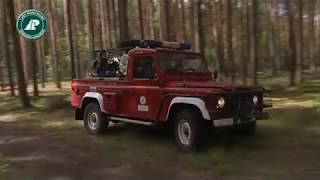 Ochrona lasu przed pożarami i szkodnictwem leśnym w Nadleśnictwie Krzystkowice
