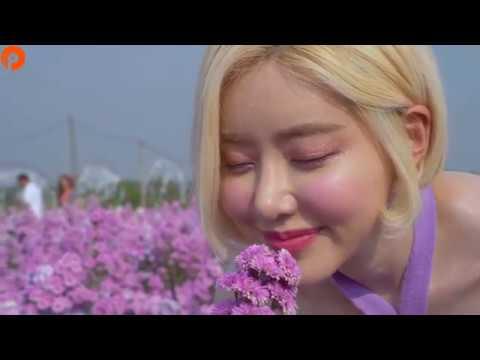 sandmann---le-shuuk-||-beautiful-girl-dj-soda-2020