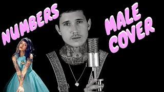 Numbers - Melanie Martinez (ROCK MALE COVER)