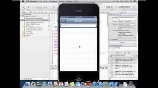 iOS basic app development using API's