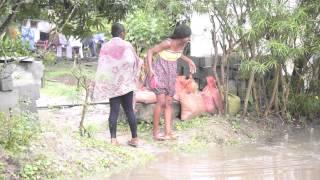 Saison des pluies à Tchimbamba (Pointe Noire - Congo)