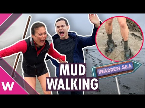 Mud walking on the Wadden Sea in The Netherlands