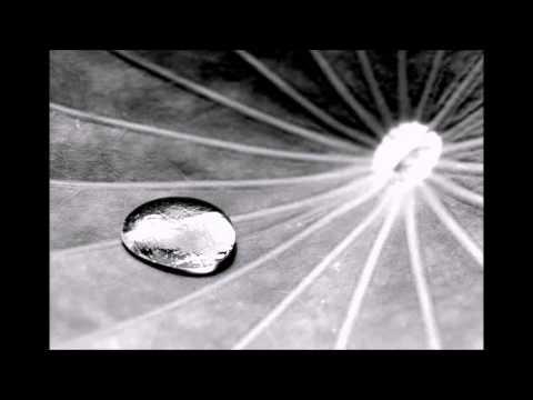 SNARE - Lotuseffekt (Beat by DansonnBeats)