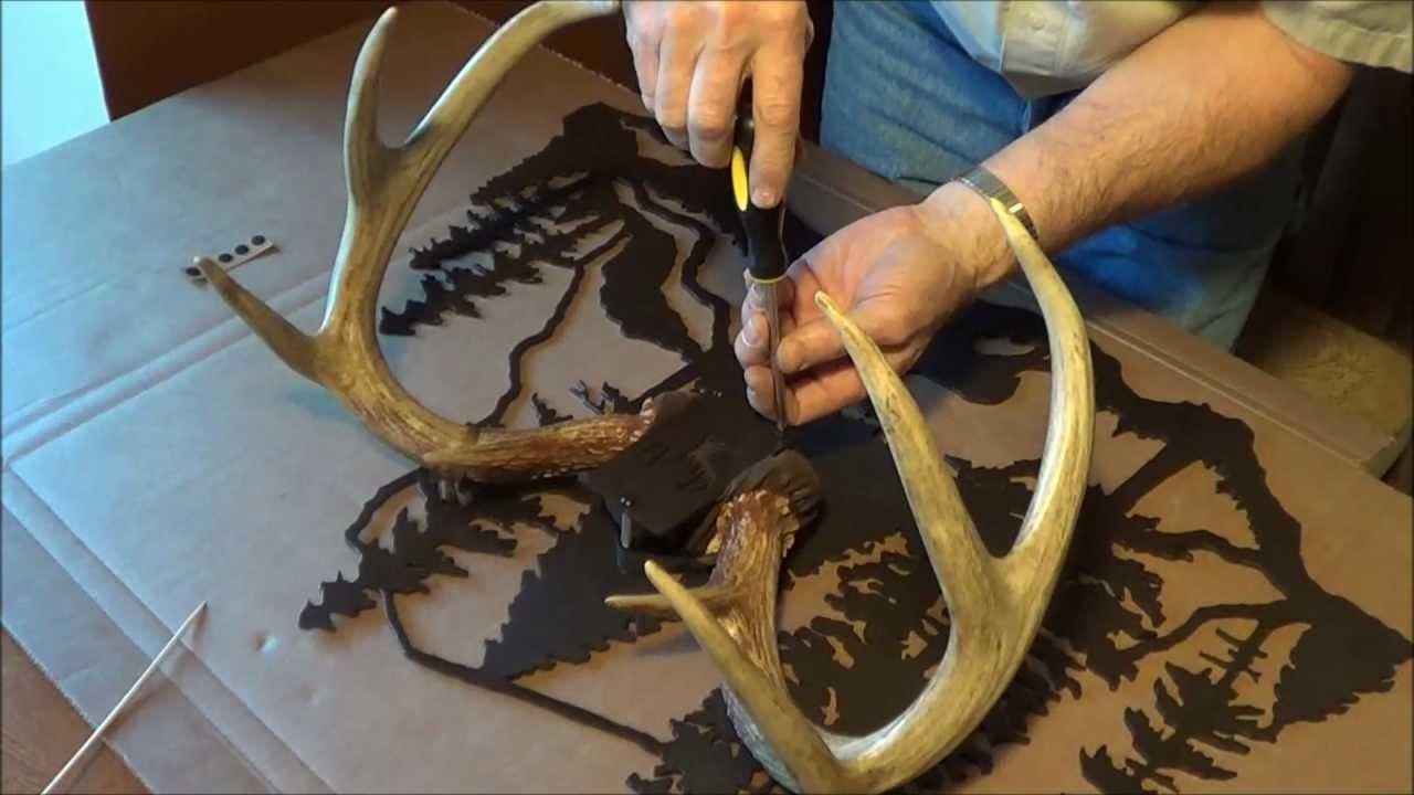 Deer antler mounting kit instructions -