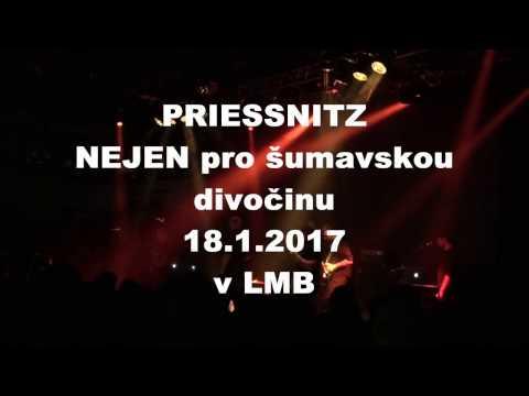 Priessnitz - Kdo Seje Vítr mp3 ke stažení