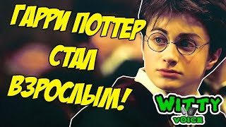 Гарри Поттер и выборы 2018 | Переозвучка | Смешная озвучка|