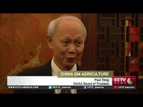 China maps out GMO crops industry development plan