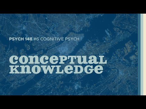 All The Things | Conceptual Knowledge (Cognitive Psych #6)