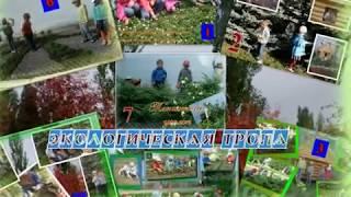 Зеленый мир детского сада МАДОУ 15 Дельфин г. Янаул Выполнила Хусаинова З