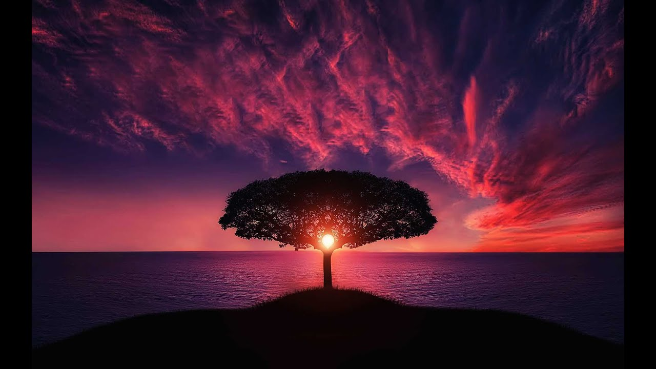 Entspannende Saxophon-Musik [3 Stunden] ♫♫♫ Hintergrundmusik, Entspannungsmusik, Musiktherapie