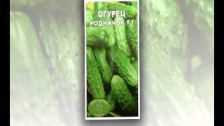 семена овощей дешево(http://goo.gl/6XT3nS Самый большой выбор семян! Заходите, в крупнейший интернет-магазин!, 2015-02-10T20:19:33.000Z)