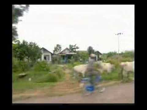 Papua AIDS - PNG