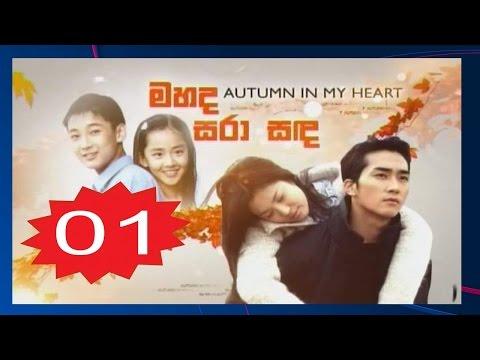 Autumn In My Heart Episode 1 Subtitle Indonesia