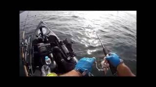 Galaxy Kayaks - Sortie dorades - Moulin Mer - 09 JUIN 2016
