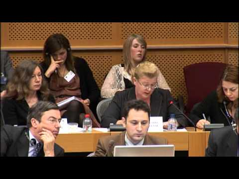 Petition in the European Parliament reg. Commission funding of Amici dei Bambini