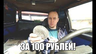 гремит глушитель на Ладе? Решение проблемы за 100 рублей