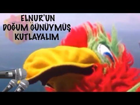 İyi ki Doğdun ELNUR :) 2.VERSİYON Komik Doğum günü Mesajı *happy birthday Elnur* Made in Turkey :) 🎂