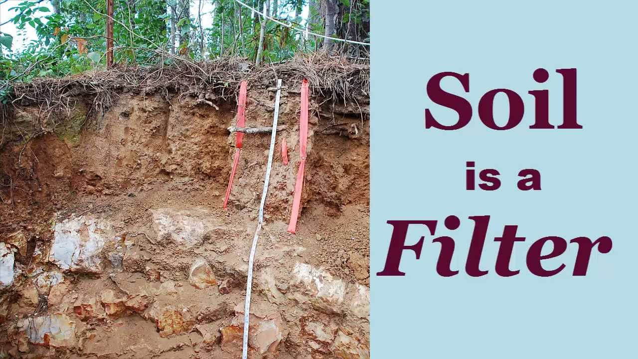 Soil is a filter annotated youtube for What is soil made out of