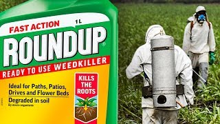Judge REFUSES To Let Attorneys Discuss Monsanto's Disgusting Conduct During Roundup Trial The judge currently presiding over one of the bellwether Monsanto Roundup trials is doing everything possible to hinder the plaintiffs. This week, the judge said ..., From YouTubeVideos