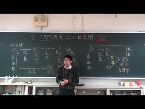 【潘彥宏老師】基礎生物(上) 16 | 第二章植物的構造與功能  第三節植物的生殖構造與功能   第四節植物對環境刺激的反應