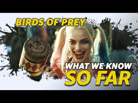 What We Know About 'Birds of Prey' | SO FAR