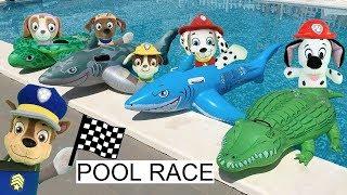 Juguetes paw patrol español:bebes juegos en piscina con tiburones y cocodrilo.Video patrulla canina