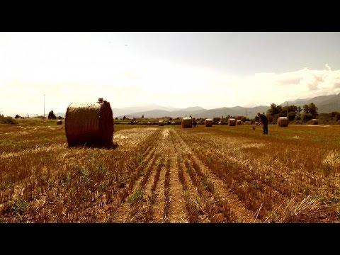 Paolo Bollettinari - La bella contadina (Video Ufficiale)